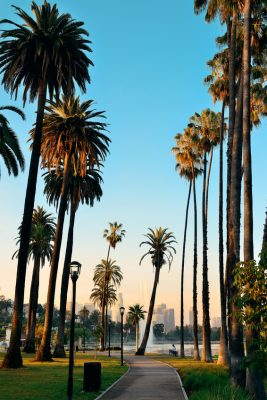 Dates Discover Los Angeles